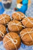 Biscoitos de farinha de aveia Imagens de Stock Royalty Free