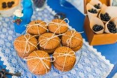 Biscoitos de farinha de aveia Fotografia de Stock Royalty Free