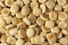 Biscoitos de ostra crocantes orgânicos Fotografia de Stock
