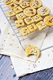 Biscoitos de Rye imagens de stock