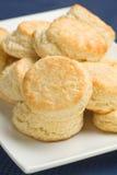 Biscoitos de soro de leite coalhado Fotografia de Stock