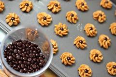Biscoitos do chocolate fotografia de stock royalty free
