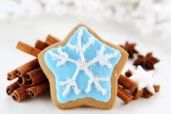 Biscoitos do Natal Imagem de Stock Royalty Free