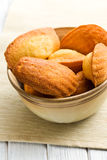 Biscoitos doces de madeleine Fotografia de Stock