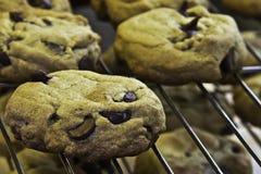 Biscoitos dos pedaços de chocolate Fotos de Stock