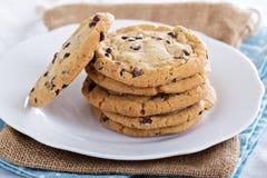 Biscoitos dos pedaços de chocolate em uma placa fotos de stock royalty free