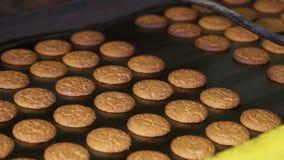 Biscoitos frescos feitos na fábrica filme