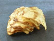 Biscoitos tuile da amêndoa Fotos de Stock