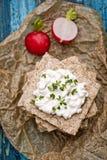 Biscote curruscante con requesón y el rábano imagen de archivo libre de regalías