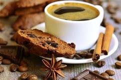 Biscotti σοκολάτας με το ξηρό το βακκίνιο Στοκ Φωτογραφίες