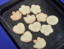 Biscotti al forno casalinghi Immagini Stock
