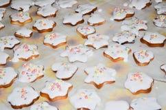 Biscotti al forno domestici di natale fotografia stock