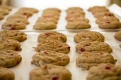 Biscotti al forno freschi Fotografie Stock