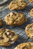 Biscotti appiccicaticcii casalinghi di Smores fotografia stock