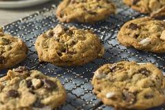 Biscotti appiccicaticcii casalinghi di Smores fotografie stock