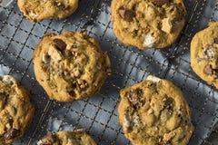 Biscotti appiccicaticcii casalinghi di Smores immagini stock