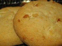 Biscotti bianchi della noce di noce di macadamia del cioccolato fotografie stock libere da diritti