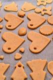 Biscotti casalinghi Immagini Stock