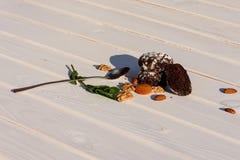 Biscotti casalinghi del cioccolato con i dadi e le albicocche secche su W fotografia stock