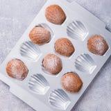 Biscotti casalinghi di Madeleine del cioccolato Fotografie Stock
