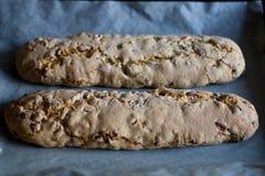 Biscotti cocido antes de cortar Imagen de archivo libre de regalías