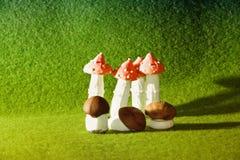 Biscotti del fungo fotografia stock libera da diritti
