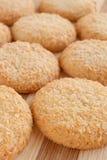 Biscotti con la noce di cocco fotografia stock