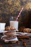 Biscotti con le crepe Immagini Stock Libere da Diritti