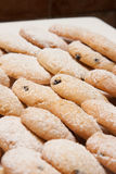 Biscotti cotti Immagini Stock Libere da Diritti