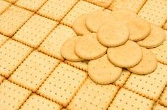 Biscotti croccanti dei cracker Fotografie Stock