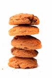 Biscotti del cioccolato Immagini Stock