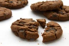 Biscotti del cioccolato Immagine Stock