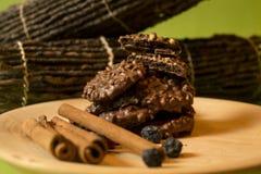 Biscotti del cioccolato di natale Fotografie Stock Libere da Diritti