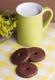 Biscotti del cioccolato e latte, fuoco selettivo Fotografia Stock Libera da Diritti