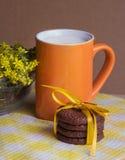 Biscotti del cioccolato e latte, fuoco selettivo Fotografie Stock