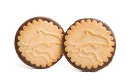 Biscotti del cioccolato isolati immagini stock libere da diritti