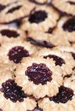 Biscotti del cioccolato riempiti gelatina immagine stock