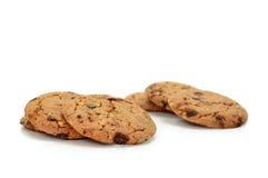 Biscotti del cioccolato su priorità bassa bianca Fotografia Stock