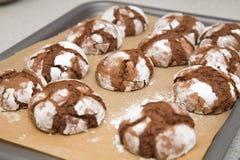 Biscotti del cioccolato su un cassetto di cottura Immagini Stock
