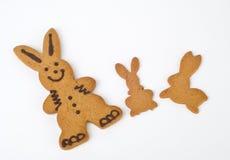 Biscotti del coniglietto di pasqua immagine stock libera da diritti