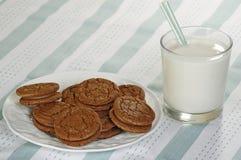 Biscotti del fondente di cioccolato Immagini Stock Libere da Diritti