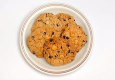 Biscotti del gruppo in zolla Fotografia Stock