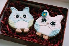 Biscotti del gufo di giorno del ` s del biglietto di S. Valentino Immagini Stock