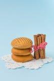 Biscotti del miele della cannella Immagine Stock Libera da Diritti