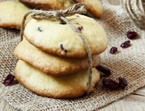 Biscotti del mirtillo rosso Immagini Stock Libere da Diritti