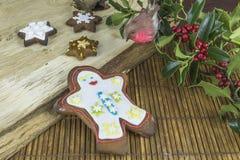 Biscotti del pan di zenzero di Natale Immagini Stock Libere da Diritti
