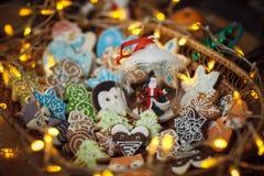 Biscotti del pan di zenzero di Natale con le luci del festone Stelle, volpe, Immagini Stock