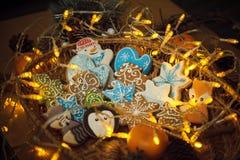 Biscotti del pan di zenzero di Natale con le luci del festone Stelle, volpe, Fotografia Stock