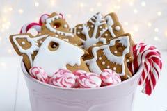 Biscotti del pan di zenzero di Natale con i bastoncini di zucchero Dolci di natale Immagini Stock