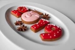 Biscotti del pan di zenzero 2019 nuovi anni immagine stock